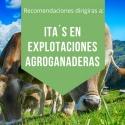 RECOMENDACIONES  EN ACTUACIONES EN EXPLOTACIONES AGROGANADERAS CON MOTIVO DEL ESTADO DE ALARMA COVID-19